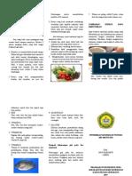 LEAFLET NUTRISI IBU MENYUSUI.doc
