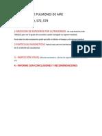 Inspeccion de Pulmones de Aire - Copia