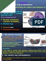 Biomedical 06