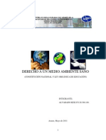 Derecho a Un Medio Ambiente Sano-conctitución y Ley Org. Educación