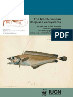 The Mediterranean Deep-sea Ecosystems