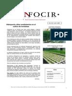 Hortalizas en Hidroponia.pdf
