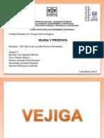 Vejiga y Próstata
