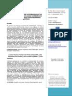 Modelo de Layout de Sistema Produtivo Para Usinas de Reciclagem de Resíduos Inorgânicos Sólidos Para Pequenos Municíp