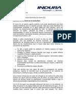 File_2267_ozono Para Acuicultura Versión 15-12-2008