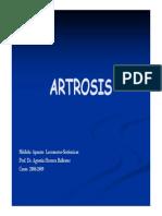 artrosis-100928224828-phpapp02