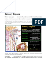 03Sensory org-Eye