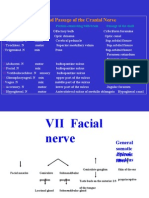 cranial nerves(II)