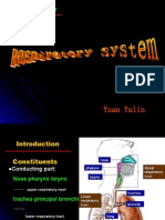 respiratory system5