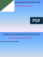Rotture cromosomiche (schede)