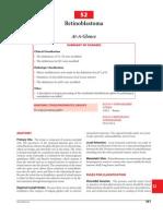Retinoblastoma AJCC Cancer Staging Manual