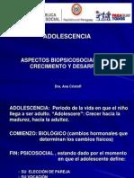 aspecto biopsicosocial