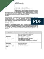 Diplomado en Direccion de Proyectos Basado en El Enfoque Pmi