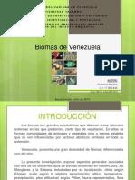 Tarea Nº 6. Biomas de Venezuela