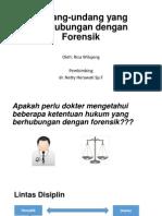 presntasi undang2.pptx