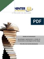 Tema 6 Aprendizagem Organizacional e a Gestão Do Conhecimento Na Abord. de Peter Senge