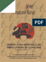 Como Plantar Maxixe.pdf