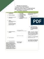informe pedagogico final en pni