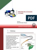 Ind. Celulosa y Papel