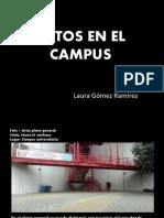 fotos en el campus