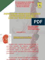 Infecciones Urinarias y Otras Alteraciones Renales Final