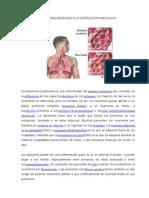 La Neumonía Asociada a La Ventilación Mecánica