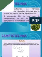 Camptotecina