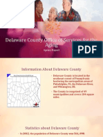 delaware county office of services for the aging agency report