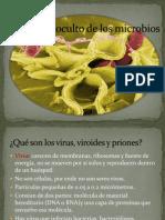 mundo oculto de los microbios