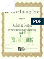 service learning certificate fall 2013