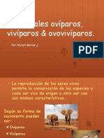 animales oviparos y viviparos-ppt