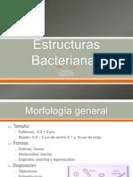 1. Estructuras Bacterianas