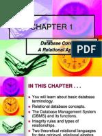 CHAPTER 1- Database
