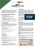 Bases Lucha Libro Pu No 2014