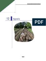 12 Agrario-09ok