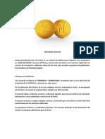 Normas y Clausulas de La Compañia Zona Network