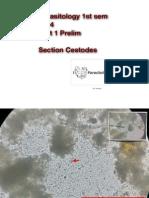 Parasitology Protozoans