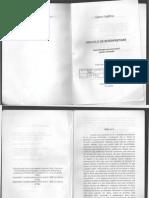 Dincolo de interpretare.pdf