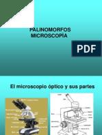PPT microscopía