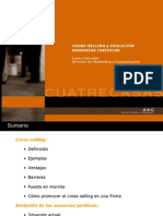 Laura Canudas 23.5.07 Cross-selling-2007