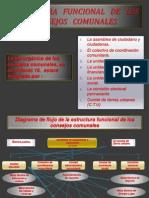 ESTRUCTURA   FUNCIONAL   DE   LOS CONSEJOS   COMUNALES.pptx