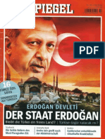 Der Staat Erdoğan