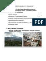 ejercitacion_niveles_de_org_2013-09-22-532 (1)