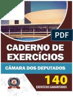 Apostila Exercicios Camara 2