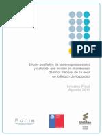 Informe Final FONIS Galerna
