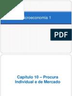 Cap. 10 - Procura Individual e de Mercado