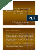 Potestad_sancionadora Del Estado