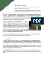 Características Botanicas de La Palmera