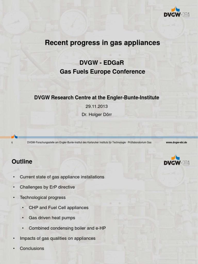 Dörr Recent Progresses Gas Appliances 2013   Cogeneration
