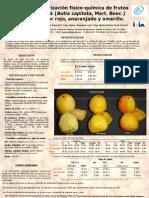 Ficha butia.pdf